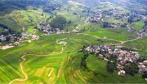 发展智慧农业 建设数字乡村