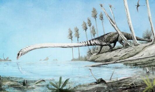 2.42亿年前海洋生活着一种怪异爬行动物:脖子是躯干3倍长 鼻孔朝天牙齿锋利