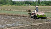 成渝地区正式启动现代农业高新技术产业示范区建设