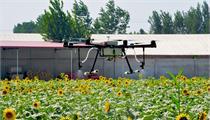 河北省加快推进农业结构调整 建设农业示范区