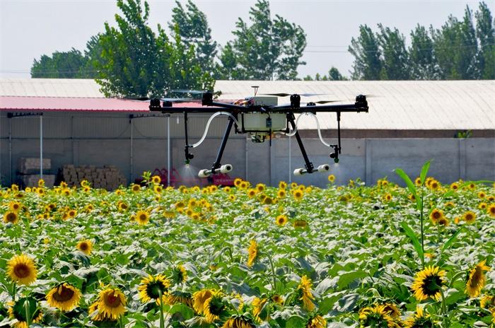 河北省加快推进农业结构调整,建设农业示范区