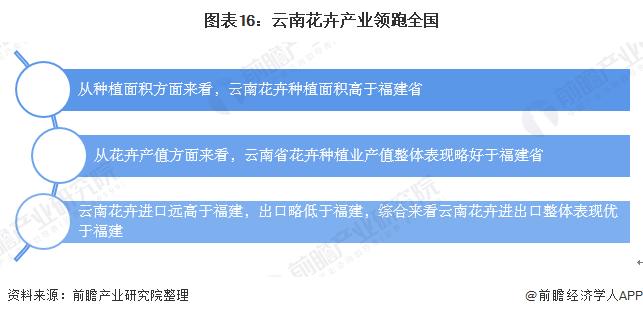 图表16:云南花卉产业领跑全国