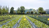 天长市为建设高效、生态、外向型农业 加快发展智慧农业