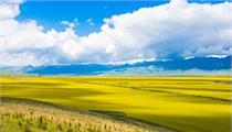 2020年第二批国家农村产业融合发展示范园名单