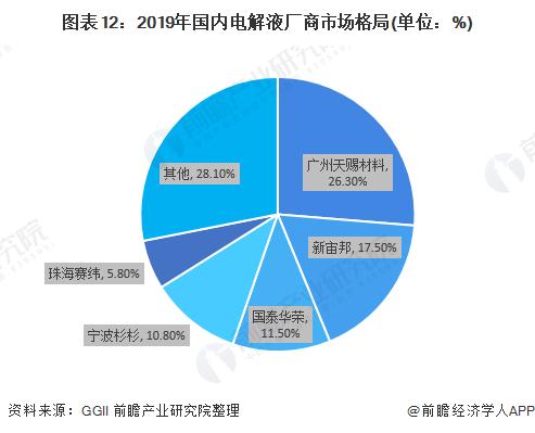 图表12:2019年国内电解液厂商市场格局(单位:%)