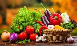 2020年中国<em>蔬菜</em><em>种植</em>行业发展现状分析 产销量均呈现稳定增长态势