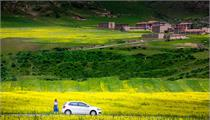 广元市旺苍县三大举措 奋力推动现代农业高质量发展