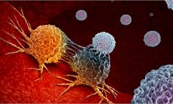 吃里扒外!科学家发现新基因突变,自身抗体居然帮新冠病毒攻击免疫系统