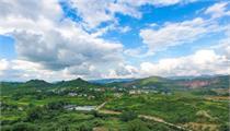 东海县农业农村局:持续加快农业农村现代化建设步伐