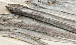 有风险!巴西进口冻带鱼内包装检出新冠 暂停相关产品进口申报1周