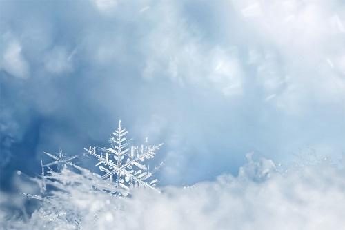 瑞雪天降!河南多景区飘起鹅毛大雪 长白山景区因雪太大关了