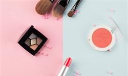 2020年中国<em>美</em>妆行业市场分析:国产品牌备受关注 移动APP购买活跃度较高