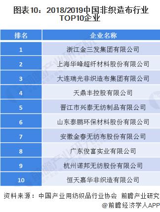 图表10:2018/2019中国非织造布行业TOP10企业