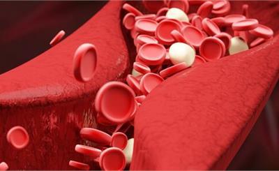 韩国献血者中有42人确诊新冠
