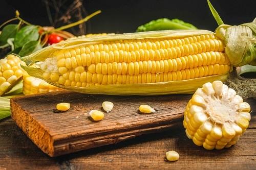 近4年新高!玉米价格每吨涨千元 去年玉米种植面积小幅下降