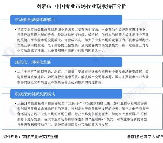 图表6:中国专业市场行业现状特征分析