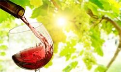 2020年中国葡萄酒行业市场现状及发展趋势分析