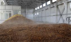 2020年中国酿酒行业供需市场分析:<em>啤酒</em>产量占据大头 葡萄酒国产化进程仍有待加快