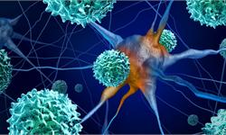 全球首个磁场肿瘤治疗人体试验获成功:53岁患者致命脑肿瘤缩小超三分之一