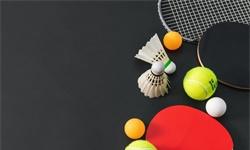 2020年中国<em>羽毛球</em>、<em>乒乓球</em>行业市场竞争格局分析 华东地区行业老大地位稳固