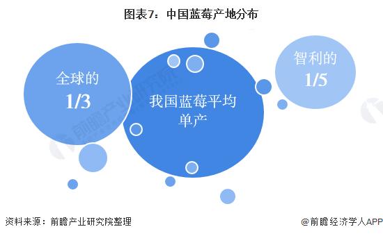 图表7:中国蓝莓产地分布