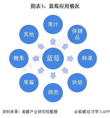 图表1:蓝莓应用情况