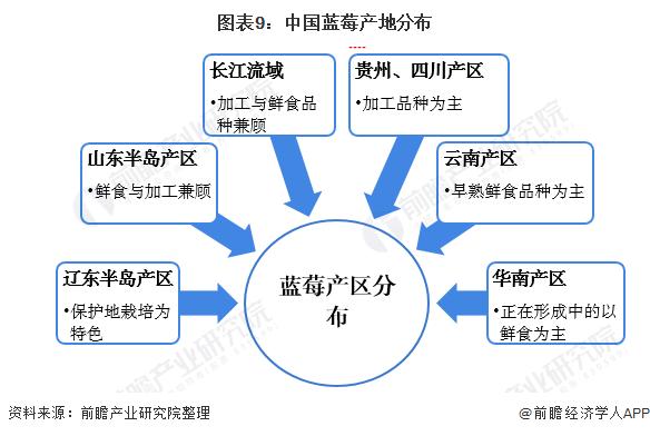 图表9:中国蓝莓产地分布