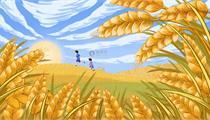 合肥高新区2019年农业产业化高质量发展  (第二批)资金奖补方案