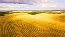 芜湖市:《关于加快发展现代农业的若干政策规定》实施细则(2020-2021年版)
