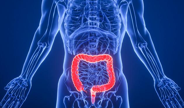 首个临床证据显示:移植瘦子的肠道菌群,可有效改善严重肥胖患者的健康