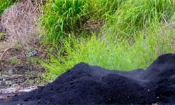 2020年全球<em>煤炭</em>行业储量现状分析 中国储产比远远低于其他国家