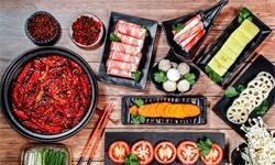 2020年中国<em>火锅</em>底料行业市场分析:市场规模已突破200亿元 餐厅食用<em>火锅</em>需求较大