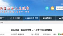 景宁畲族鹤溪街道:田园综合体,开辟乡村振兴新路径