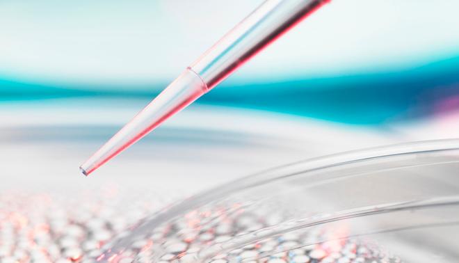《材料研究快报》:高熵合金过渡金属助力制造全新超导体