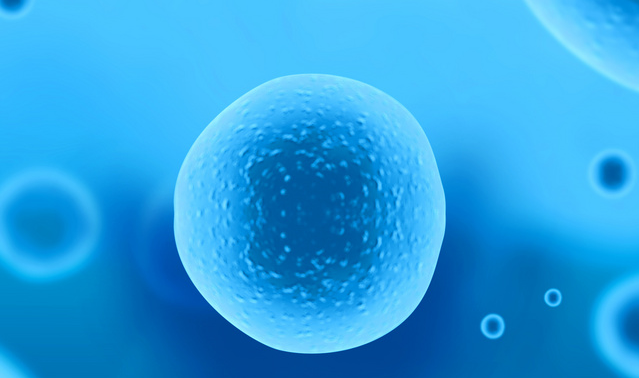 iScience:发现细菌形成膜泡新机制,将助推新疗法和疫苗开发