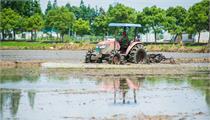 河南:《关于加快推进农业高质量发展建设现代农业强市促进乡村产业振兴的实施意见》 解读