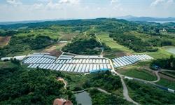 2020年中国淘宝村镇行业市场现状及竞争格局分析