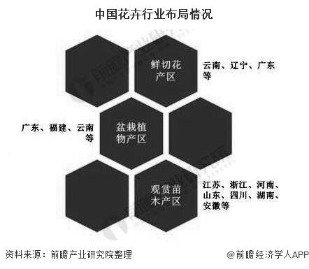 中国花卉行业布局情况