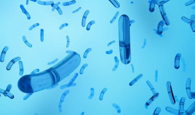 《科学》:研究揭示沙门氏菌在免疫系统消杀中的生存机制