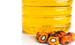 2020年全球及中国<em>棕榈油</em>行业供需现状分析 国内<em>棕榈油</em>进口依赖性较强