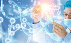 比<em>钢铁</em>更坚固!科学家利用基因工程,让细菌生产出最强韧的新型纤维材料