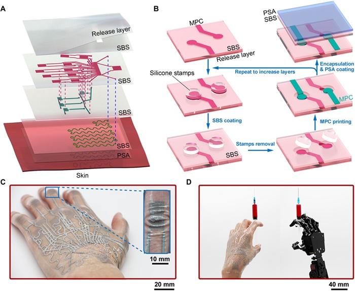 8倍延展!中国研究团队开发出新型电子纹身