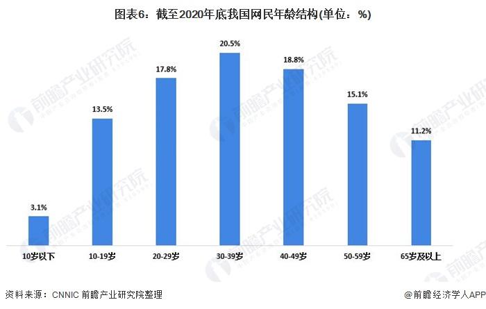 图表6:截至2020年底我国网民年龄结构(单位:%)
