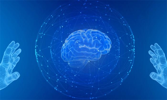 """重磅!《科学》:人体干细胞可以在体外培育出另一个""""大脑"""""""