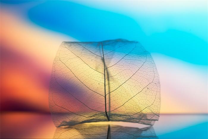 《自然》子刊:中科大合肥微尺度中心开发手性胺在温和条件下的合成方法
