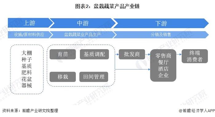 图表2:盆栽蔬菜产品产业链