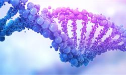 科学家放了一本《独立宣言》到人类基因中