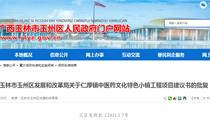 玉林市玉州区发改局关于仁厚镇中医药文化特色小镇工程项目建议书的批复