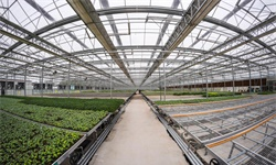 2020年中国及主要省市<em>农业产业化</em><em>联合体</em>行业相关政策汇总分析 未来发展空间巨大