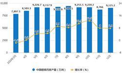 2020年全年中国钢铁行业产量规模统计情况 <em>粗</em><em>钢</em>累计产量首次突破10亿吨